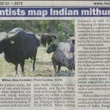 ICAR scientists map Indian mithun genome