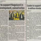 Centre to support Nagaland in mithun development, conservation
